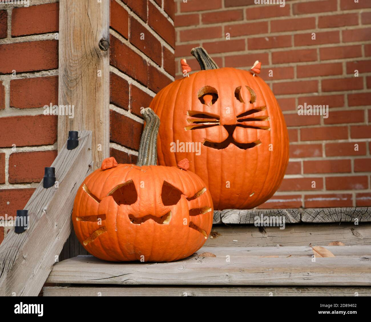 halloween-pumpkins-carved-with-a-cat-face-on-front-porcg-against-vricks-2D89402.jpg