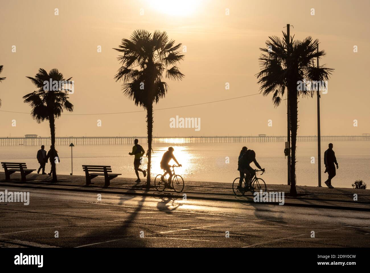 southend-on-sea-essex-uk-8th-nov-2020-remembrance-sunday-has-dawned-bright-but-hazy-with-many-people-taking-the-chance-to-exercise-along-the-seafront-of-southend-on-sea-during-the-second-covid-19-lockdown-period-silhouette-of-people-and-palm-trees-2D9Y0CW.jpg