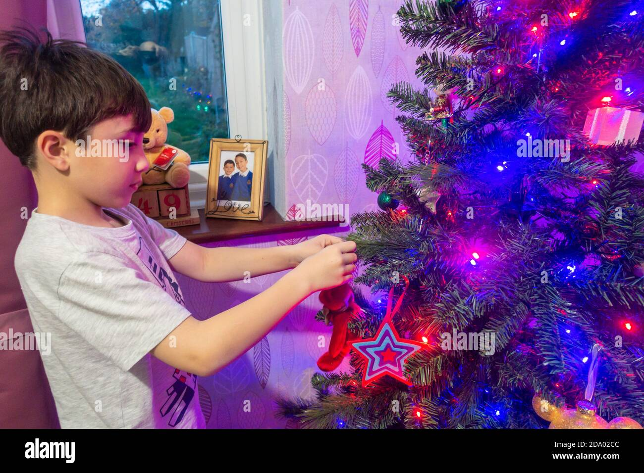 a-child-hangs-decorations-on-a-christmas-tree-which-is-lit-y-coloured-fairy-lights-2DA02CC.jpg