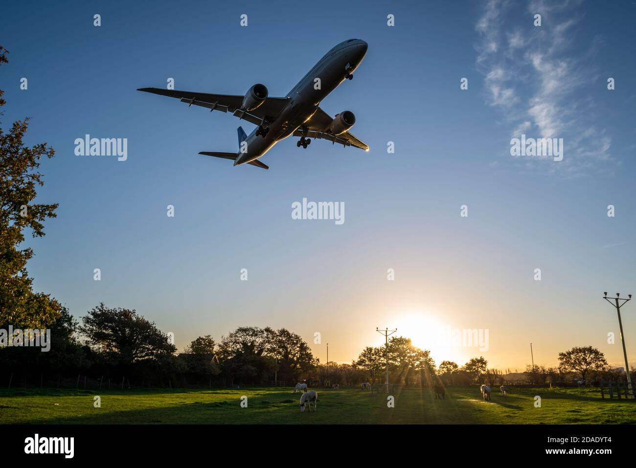 london-heathrow-airport-london-uk-12th-nov-2020-overnight-rain-has-cleared-into-a-bright-sunny-but-cool-morning-as-the-first-arrivals-land-at-heathrow-the-horses-in-the-field-under-the-approach-are-unperturbed-by-the-jet-planes-passing-overhead-2DADYT4.jpg