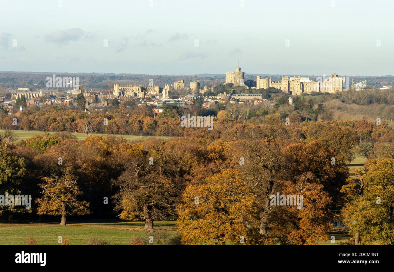 view-from-windsor-great-park-to-windsor-castle-in-late-autumn-or-november-with-colourful-autumnal-mature-trees-in-the-foreground-uk-2DCM4NT.jpg