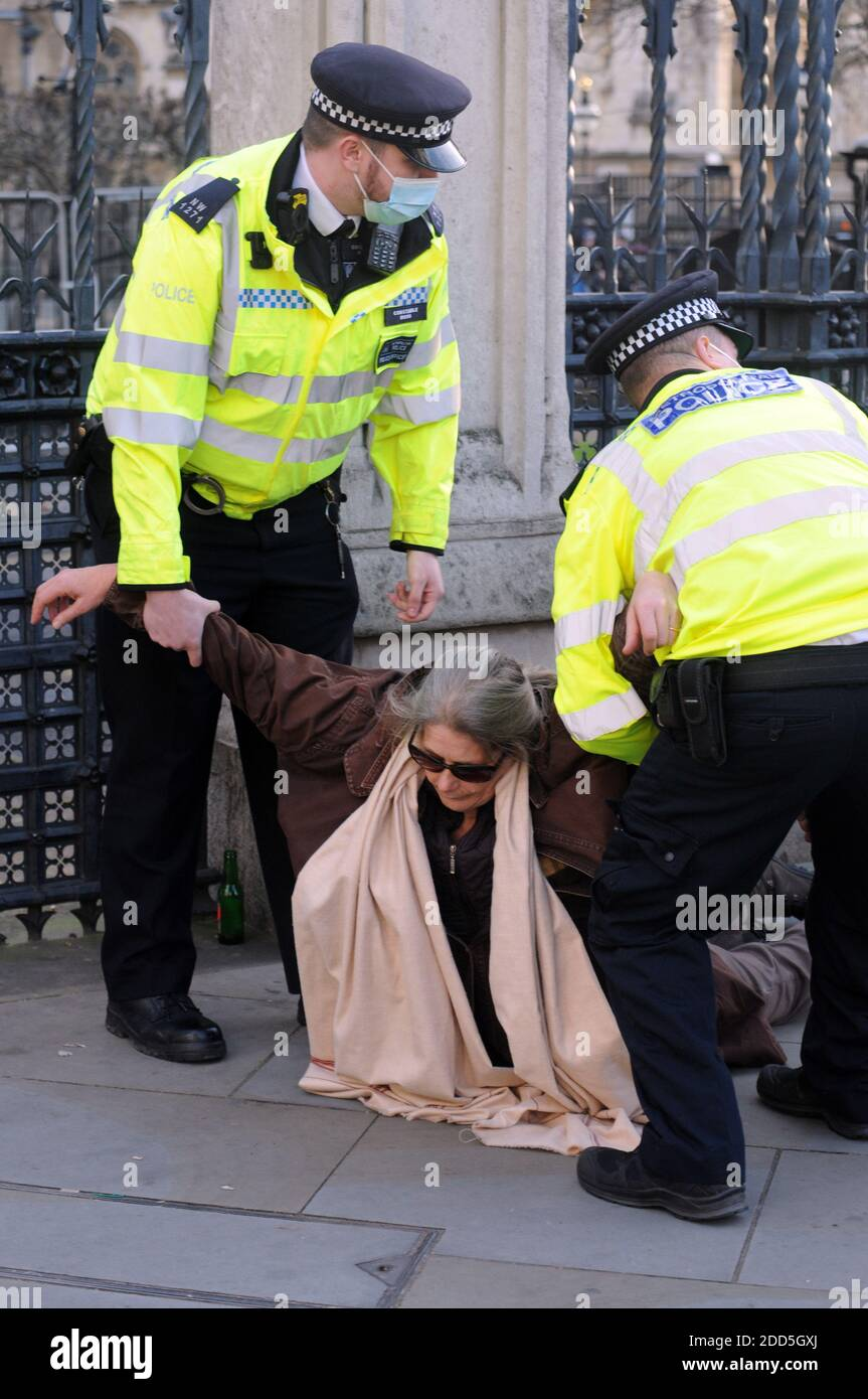 London, UK. 24th Nov, 2020. 72 year old anti-vaccine protester arrested outside the Houses of Parliament. The incident was witnessed by Charles Walker Conservative MP for Broxbourne who shouted out to the police that it was a disgrace and an outrage and that he would raise this in parliament. Credit: JOHNNY ARMSTEAD/Alamy Live News Stock Photo