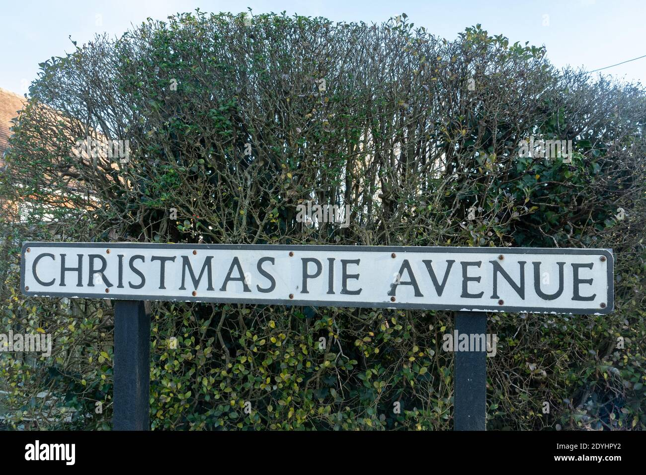 christmas-pie-avenue-road-sign-in-surrey-street-name-with-festive-season-theme-uk-2DYHPY2.jpg