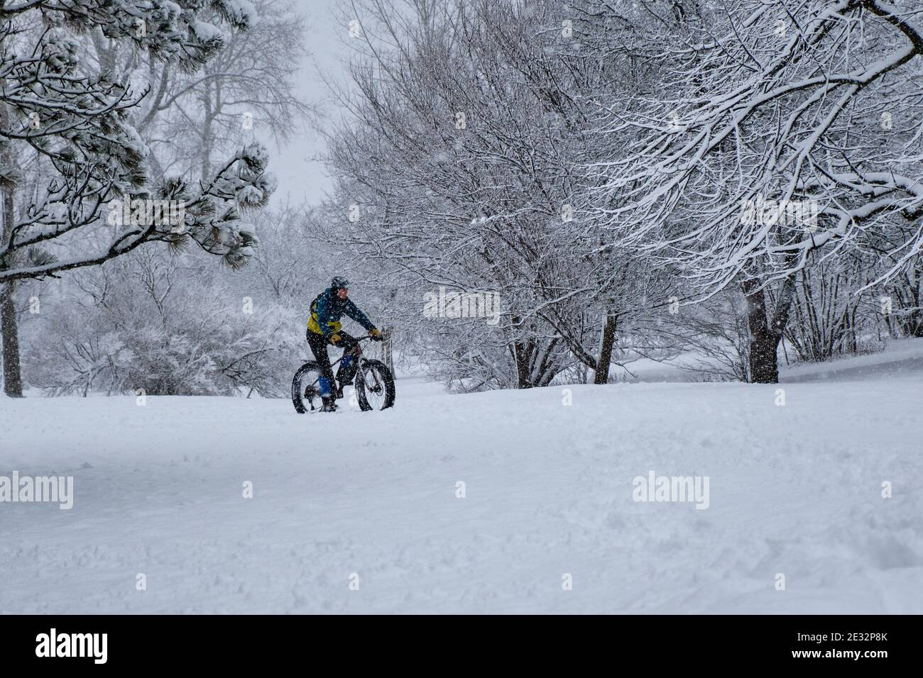 ottawa-canada-january-16th-2021-a-cyclist-enjoying-the-fresh-snow-in-the-arboretum-as-snows-continues-to-fall-while-the-city-still-struggles-with-the-covid-19-situation-the-ontario-pandemic-state-of-emergency-declared-on-thursday-allows-people-to-go-out-for-exercise-purposes-with-people-from-own-households-and-limits-gathering-to-five-people-the-first-snowstorm-of-2021-has-so-far-brought-over-15cm-of-snow-with-an-extra-10cm-expected-by-tomorrow-in-the-capital-credit-meanderingemualamy-live-news-2E32P8K.jpg