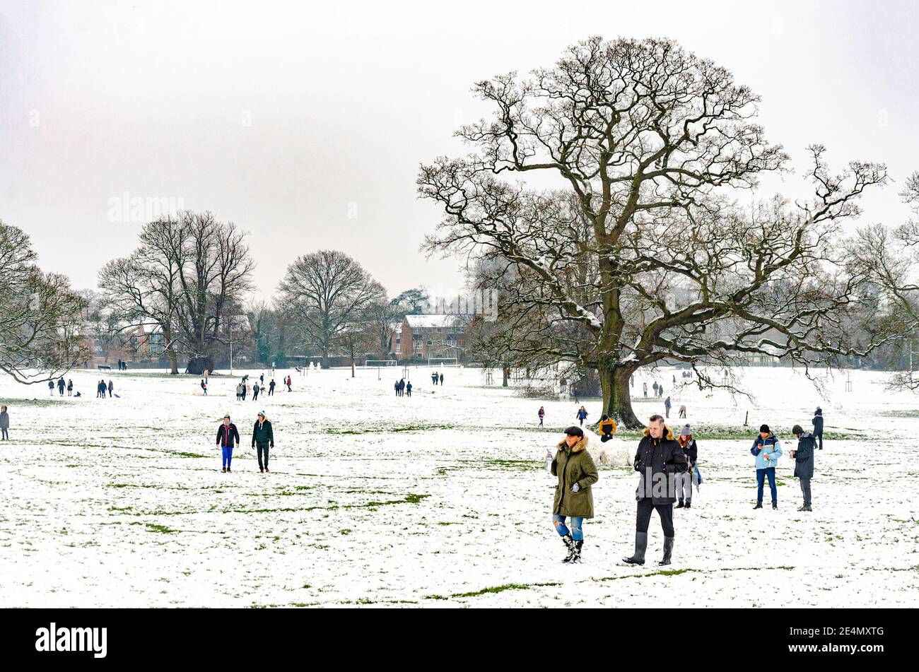 people-enjoy-the-snow-in-prospect-park-reading-berkshire-uk-although-there-is-a-coronavirus-lockdown-people-are-out-enjoying-their-exercise-2E4MXTG.jpg