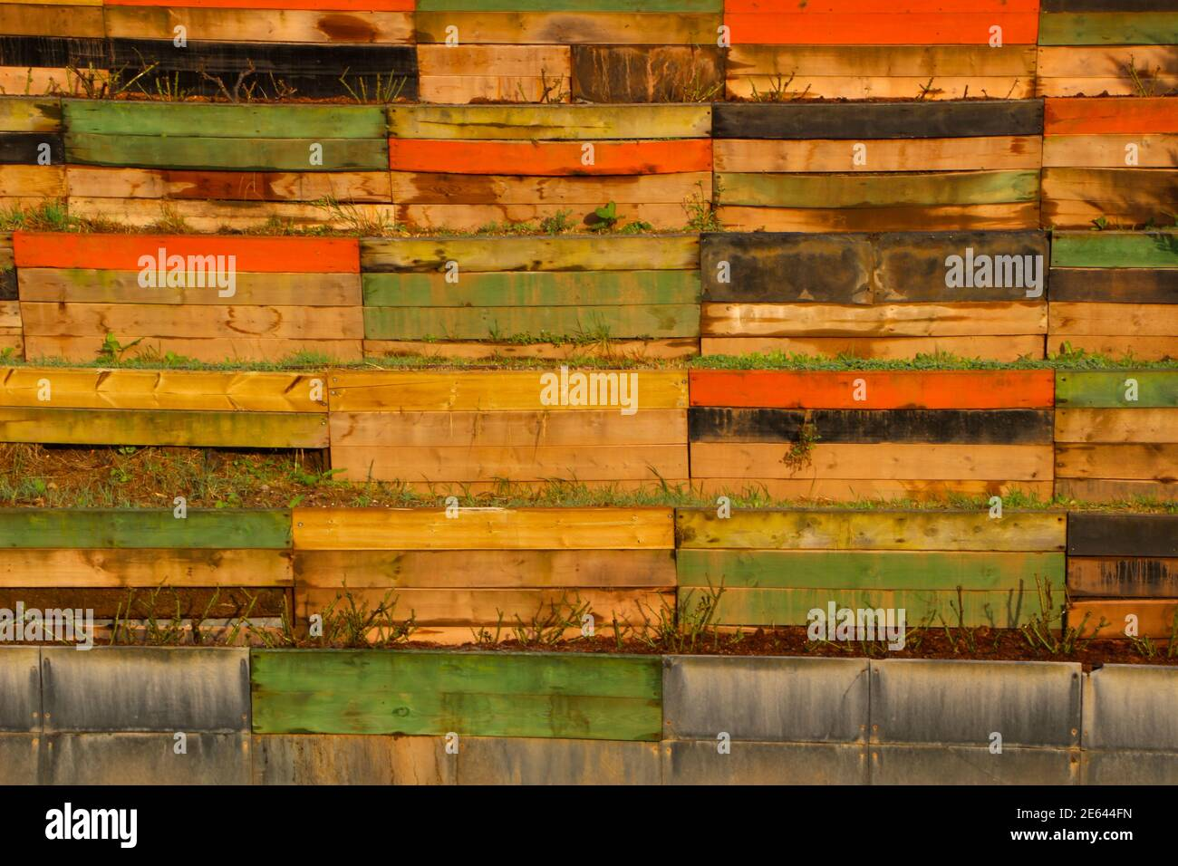 wall-of-brightly-painted-wooden-planks-used-to-support-planters-for-rose-bushes-pruned-in-winter-in-the-atlantic-las-llamas-public-park-winter-2021-2E644FN.jpg