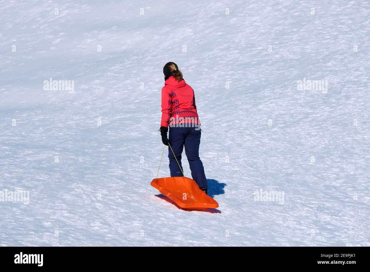 woman-pulling-an-orange-sled-up-hill-covered-in-snow-so-she-can-slide-down-a-winter-sport-in-canada-2E9PJK1.jpg