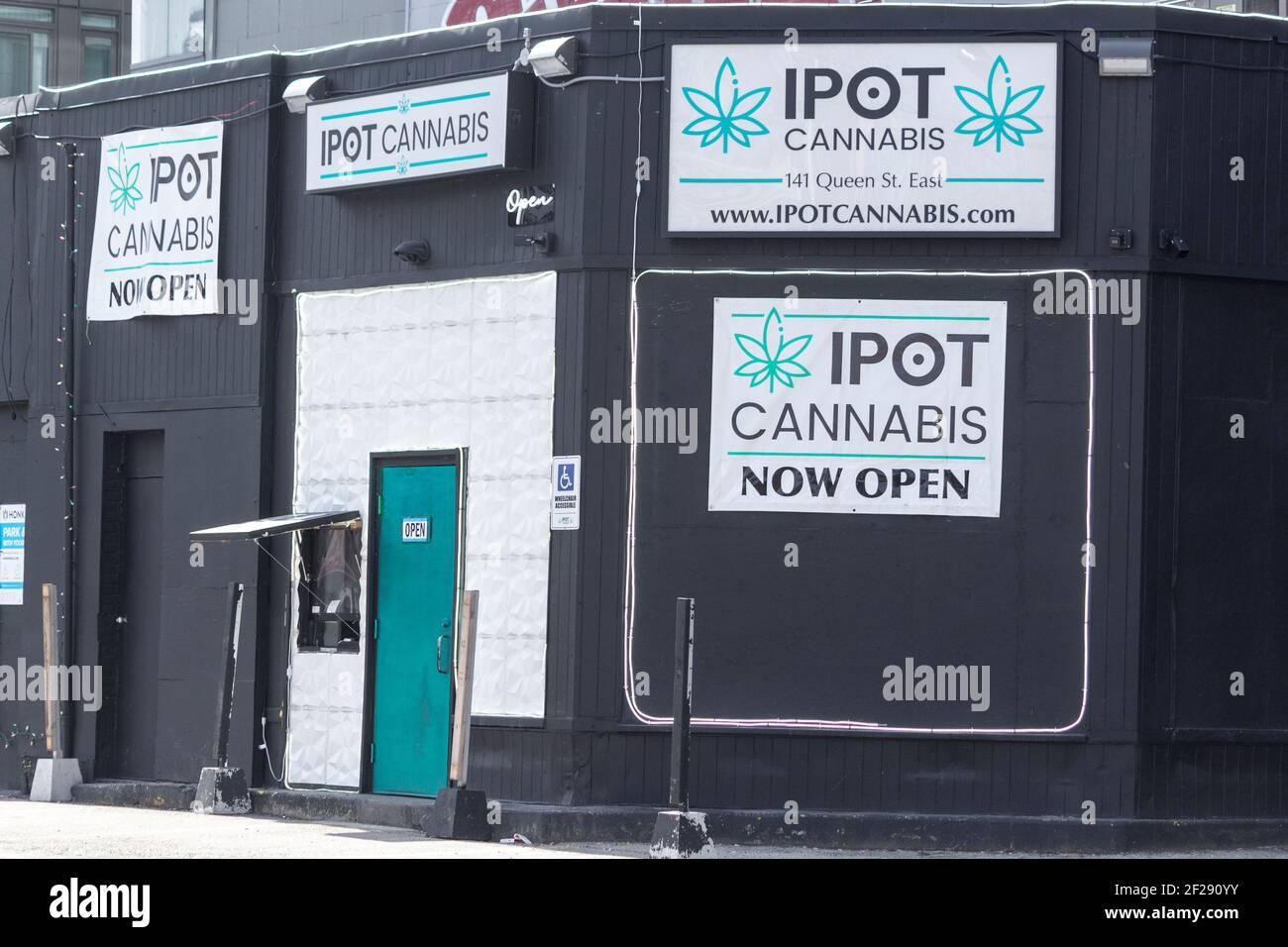 cannabis-marijuana-store-in-toronto-ontario-canada-2F290YY.jpg