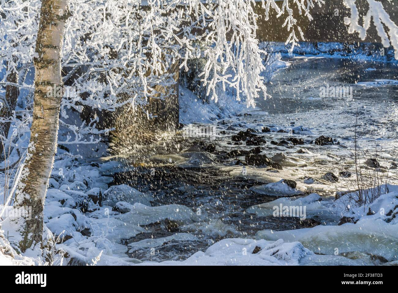 Frosty birch tree by a icy river in Hollola Finland Stock Photo