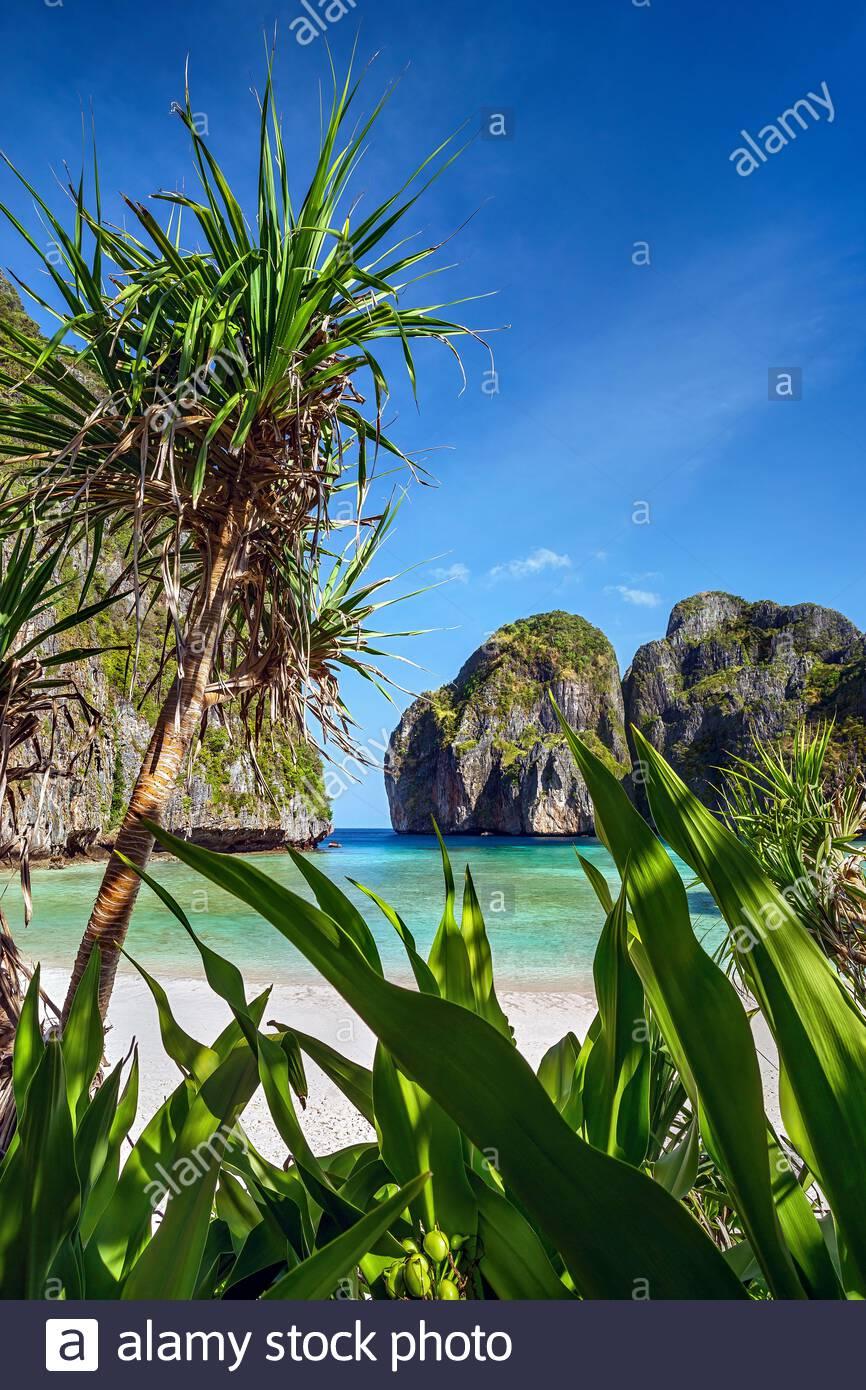 thailand-deserted-maya-bay-on-koh-phi-ph