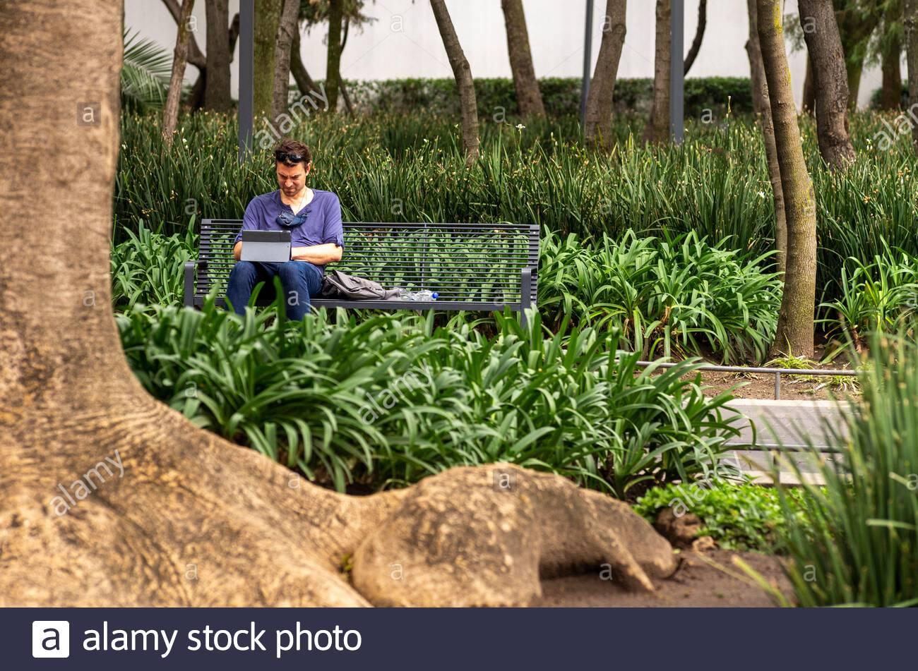 A man works remotely on his laptop in Mexico City's Parque De La Bombilla. Stock Photo
