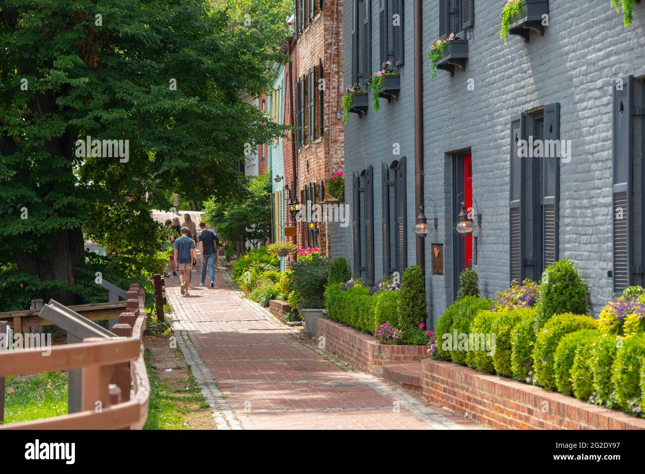 usa-washington-dc-georgetown-old-homes-along-the-c-o-canal-towpath-now-a-walkway-2G2DY97.jpg