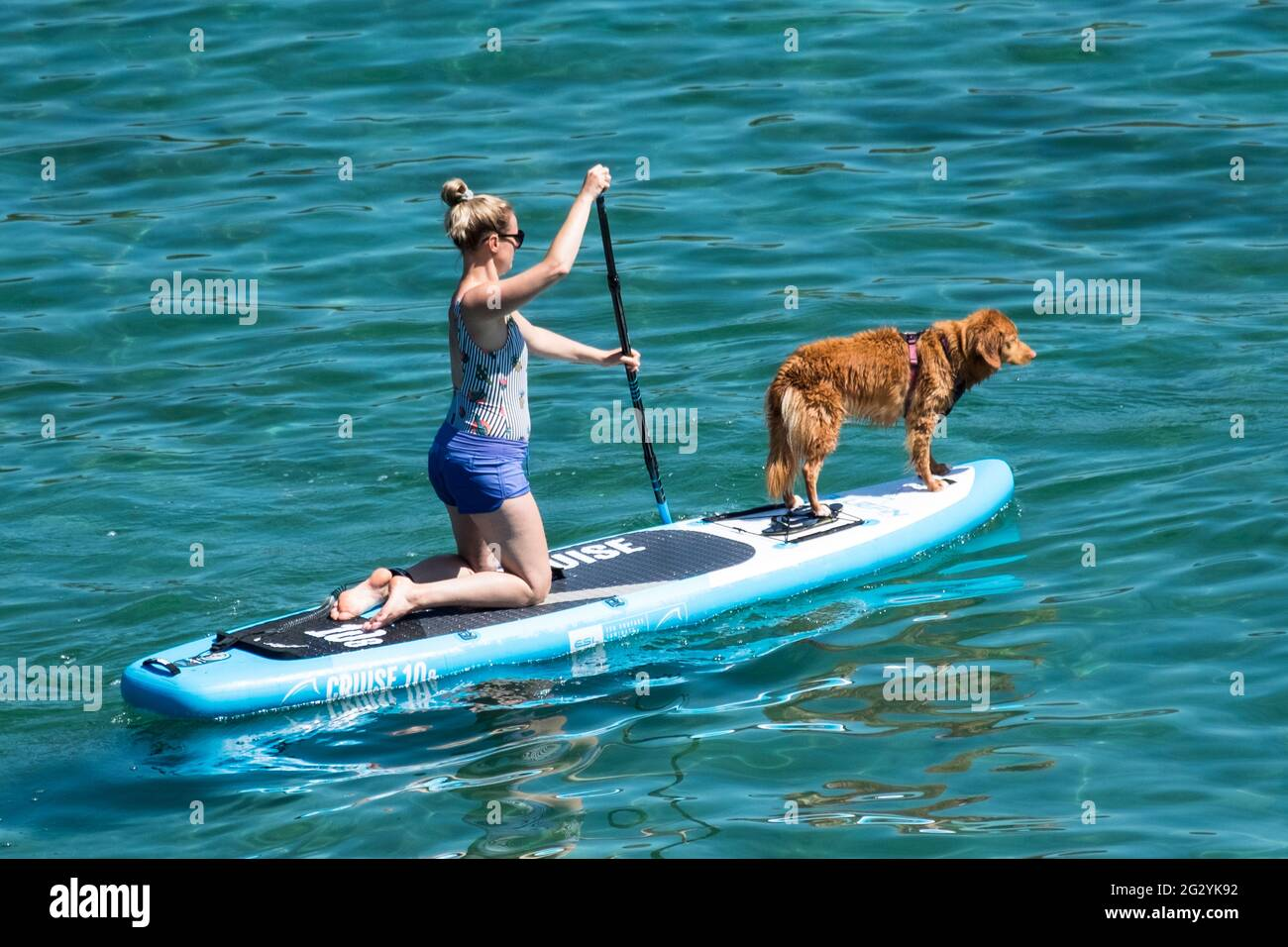 Coverack, Cornwall, UK. 13th June, 2021. A woman paddle boarding with her dog. Hot sunny day on the cornish coast at coverack Stock Photo