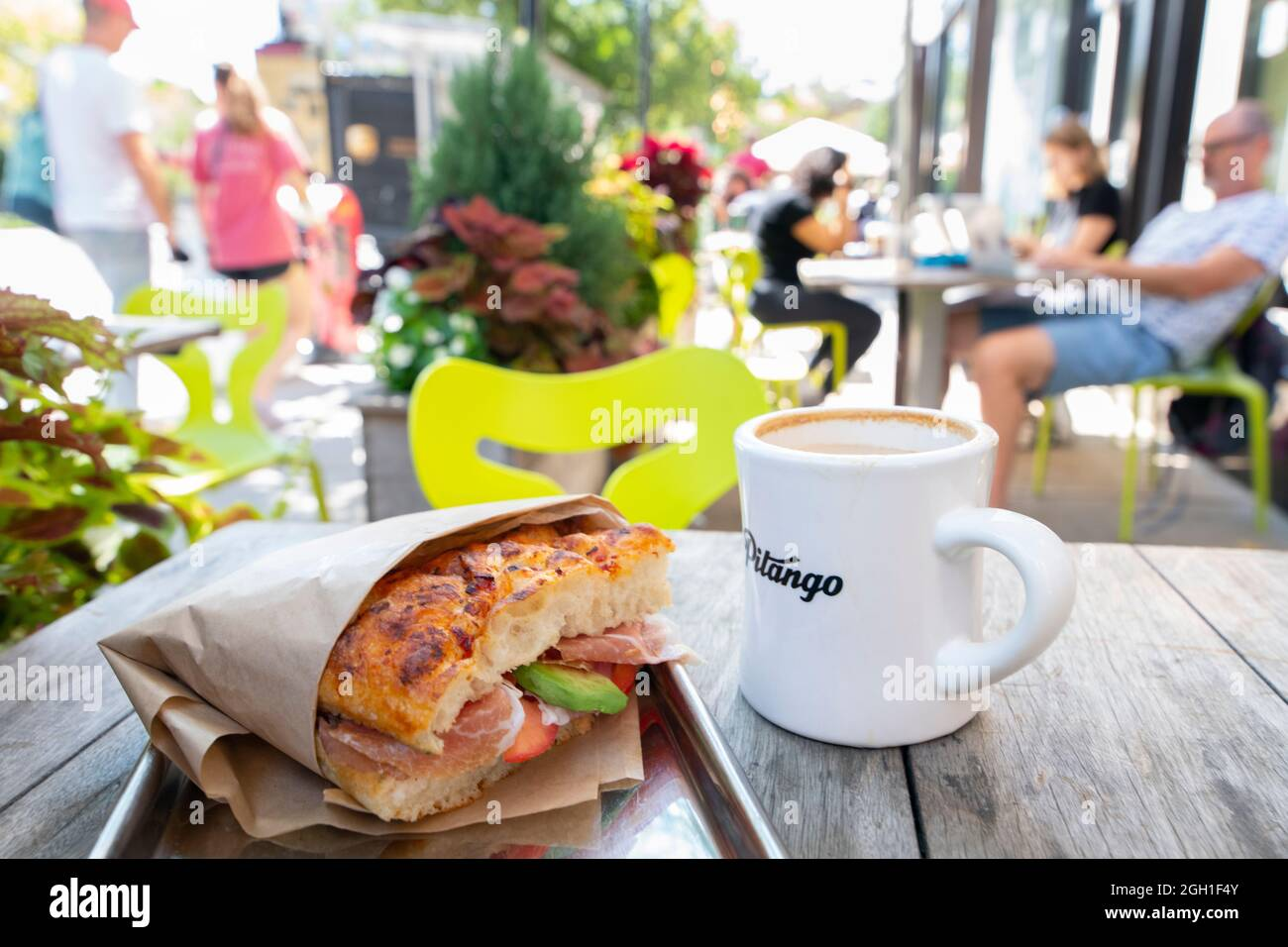 usa-washington-dc-food-focaccia-sandwich-at-pitango-bakery-cafe-in-adams-morgan-made-with-avocado-tomato-prosciutto-2GH1F4Y.jpg