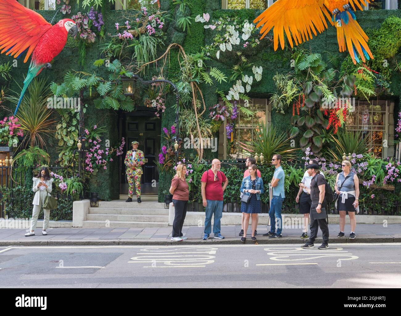 tour-guide-and-tour-group-stand-on-the-pavement-outside-the-colourful-jungle-theme-decorated-frontage-of-annabels-club-berkeley-square-london-uk-2GJHRTJ.jpg