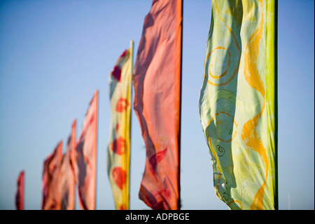 flags at the Appledore festival, north devon, UK - Stock Image