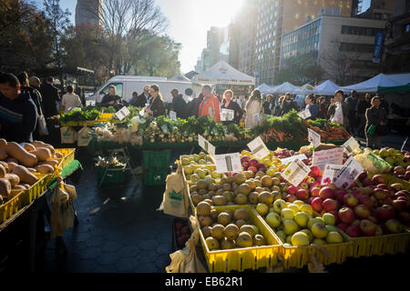 Shoppers a farm stand at the Union Square Greenmarket in New York on Monday, November 24, 2014.   (© Richard - Stock Image