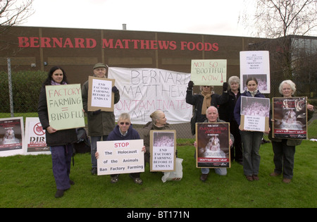 Protesters demonstrate outside the Bernard Matthews Foods plant in Houghton Regis UK - Stock Image