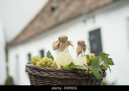 Bouteilles et raisins dans un panier - Image