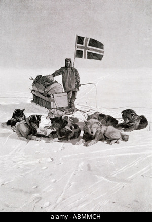 Captain Roald Engelbregt Gravning Amundsen,1872 -1928.  Seen here at the South pole under the Norwegian flag. - Stock Image
