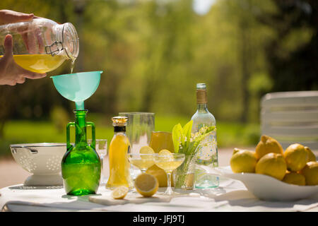 Limoncello maison, prête à être versée dans des bouteilles - Image