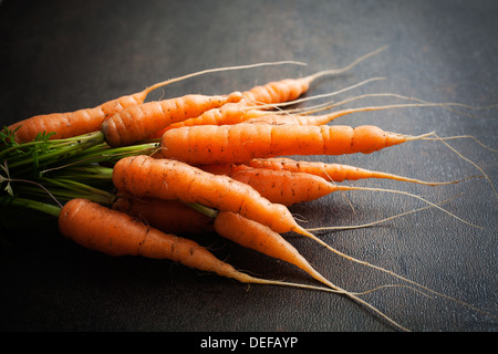 Bunch of fresh carrots on dark background - Stock Image