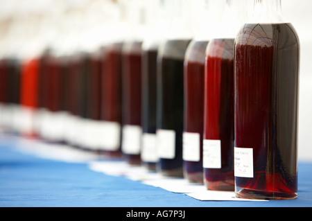 étiquettes et fonds de bouteilles de verre de vin fait maison d'affilée à des fins de jugement - Image
