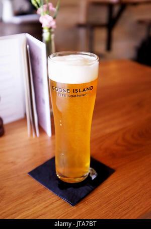 Verre de bière goose island brassée à chicago usa - Image