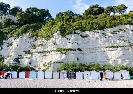 Cabines de plage et des falaises de craie à Beer, ville côtière de bord de mer anglais, côte est du Devon, Angleterre, Royaume-Uni - Image