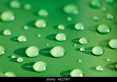 Rain drops on plastic bin lid - Stock Image
