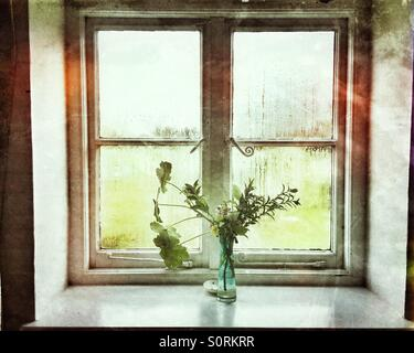 A vase of flowers at a window - Stock Image