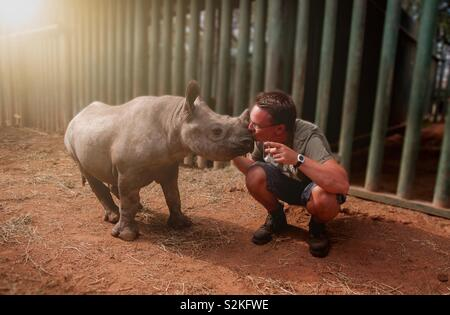 Young man kissing baby rhinoceros - Stock Image