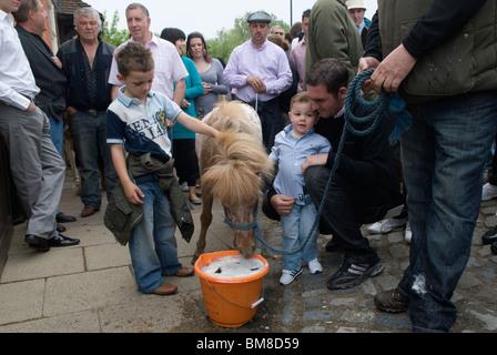 Foire aux chevaux. Wickham Hampshire Royaume-Uni. Cérémonie d'ouverture de la foire de la Charte, boissons à poney par tradition dans un seau de bière. - Image de l'éditeur