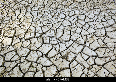 Cracked clay mud in the Red River Valley. Winnipeg, Manitoba, Canada. - Stock Image