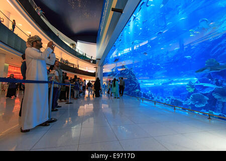 DUBAI, UAE - October 07,2014 : Aquarium in Dubai Mall - world's largest shopping mall , Downtown Burj Dubai - Stock Image