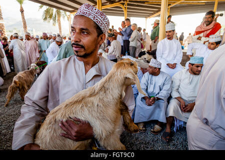 The Friday Livestock Market, Nizwa, Ad Dakhiliyah Region, Oman - Stock Image