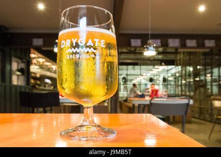 Brasserie Drygate - verre de Pilsner à la brasserie et restaurant, Glasgow, Ecosse, Royaume-Uni - Image