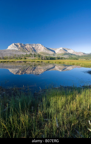 Sofa Mountain, Waterton Lakes National Park, Alberta, Canada - Stock Image