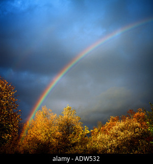 RAINBOW WITH AUTUMNAL TREE FOLIAGE AND STORMY SKY GERMANY EUROPE - Stock Image