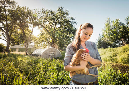 Woman holding chicken on farmland smiling - Stock Image
