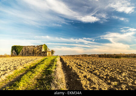 an abandoned and ruined farm in the fields of Italy - Stock Image