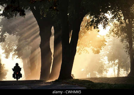 sunlight,motorcycle,road,motorcycle tour,fog - Stock Image