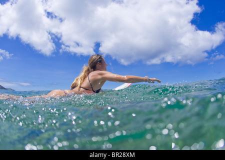 girl paddling surfboard - Stock Image