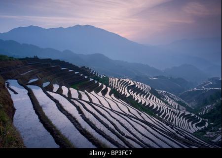 sunset at Dragon's Backbone Rice Terraces near Yao Village of Dazhai, Guangxi Province China, - Stock Image