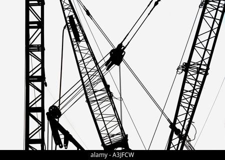 Cranes in silhouette - Stock Image