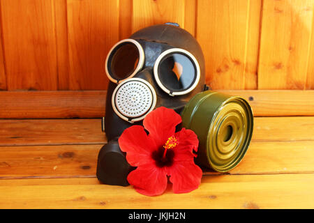 masque à gaz noir ancien et hibiscus de fleur rouge sur un fond en bois. - Image de l'éditeur