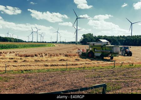 Germany, North Rhine-Westphalia, Sassenberg, Harvester in field, wind wheels in background - Stock Image