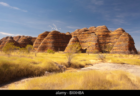 Conical rock formations at the Bungle Bungles, Purnululu National Park, Kimberley, Western Australia - Stock Image