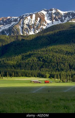 Farmland near Joseph with barn and Wallowa Mountains Oregon - Stock Image