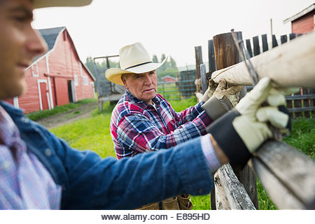 Ranchers replacing fence posts in pasture - Stock Image